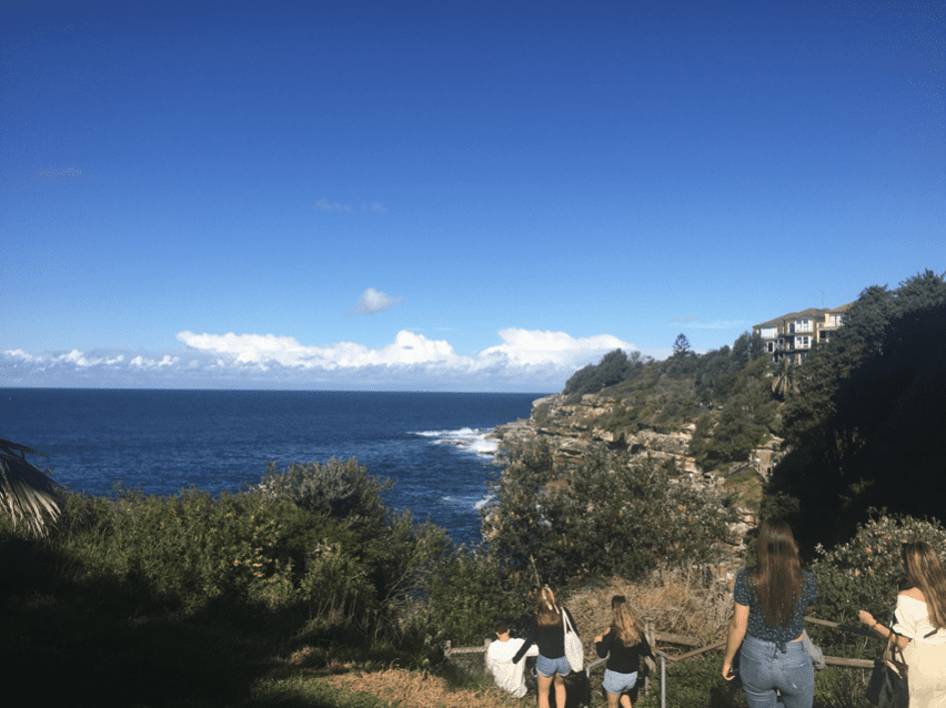 study abroad in Australia with IFSA